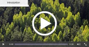 Avancerad Skogssköttsel - Stora Enso Skog