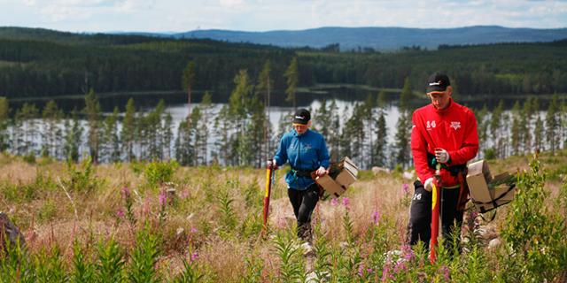 Plantering - Stora Enso Skog