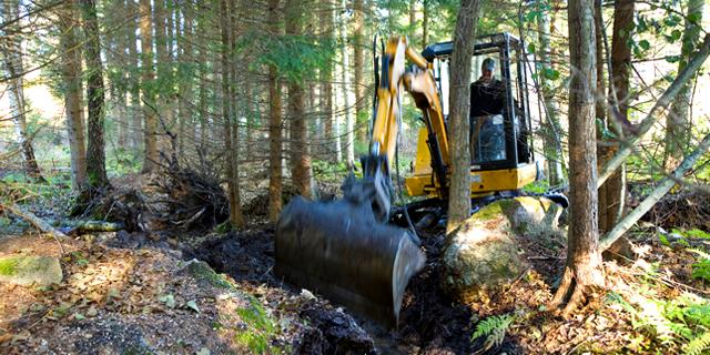 Dikning – Stora Enso Skog