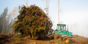 Maskin lyfter ris - Stora Enso Skog
