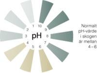 pH-värden - Stora Enso Skog