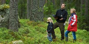 Planering i skogen