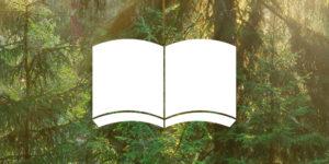 Bok i skogen - Stora Enso Skog