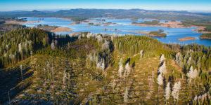 Omloppstider - Stora - Enso Skog