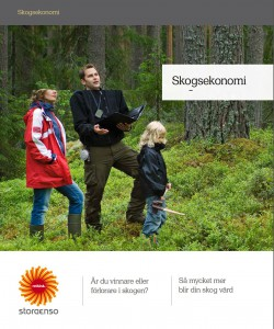 Skogsekonomi