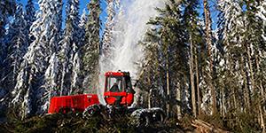Skogsindustrin