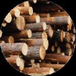 Skogscertifiering miljöcertifiering PEFC FSC Förvaltningsavtal