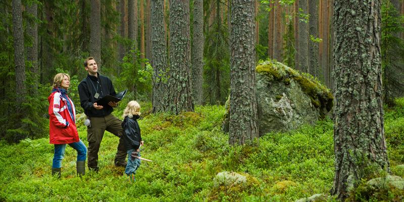skogen_skolan_800