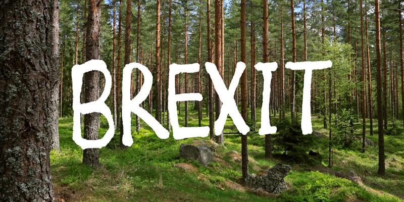 brexit_800