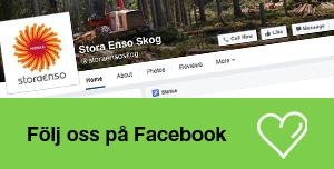 Gilla oss på Facebook - Stora Enso Skog