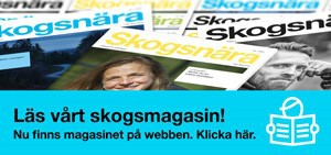 Läs skogsmagasinet digitalt