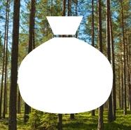 Finansiering - Stora Enso Skog